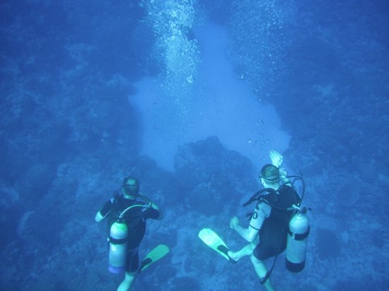 Cook Island Divers: Descending into crystal clear waters on the North side of Raro