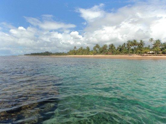 Taipu de Fora Inn: piscina de corais