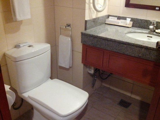 Cebu Parklane International Hotel: Toilet