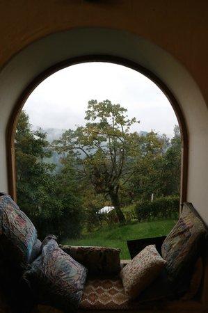 Casa Mojanda: View out dining room window.