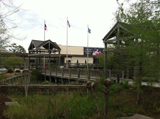 X Picture Of North Carolina Aquarium At Pine Knoll
