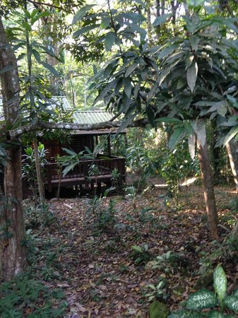 The Lodge and Spa at Pico Bonito : Comodo, naturaleza, tranquilidad!