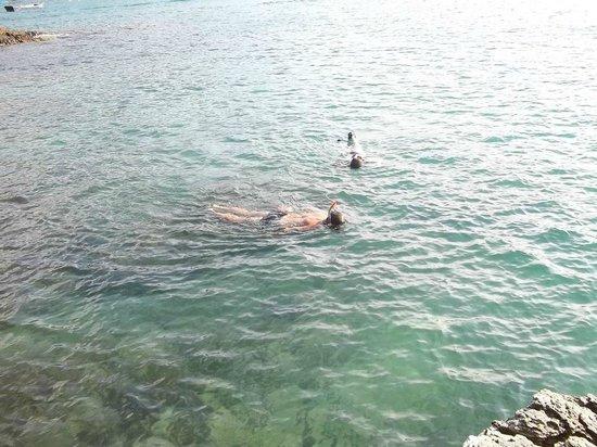 Tartaruga Beach: Snorkel