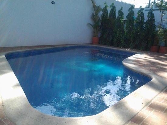 Hotel Executive Managua : The Pool