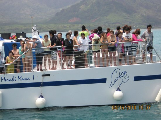 Captain Bob's Adventure Cruises: Japanese speaking tourist sister tour