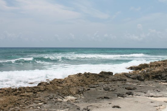 Grand Park Royal Cozumel: East side of the island
