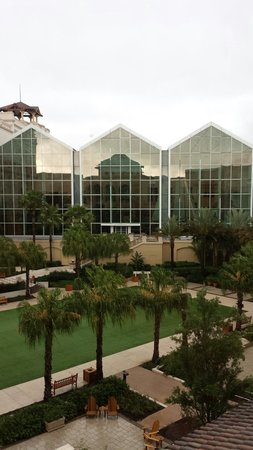 Gaylord Palms Resort & Convention Center: Beautiful sites throughout the resort.