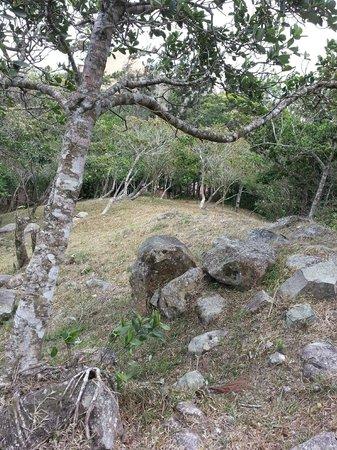 Posada Loma Grande Bed and Breakfast Inn: Ladera donde se puede llegar a través de los senderos