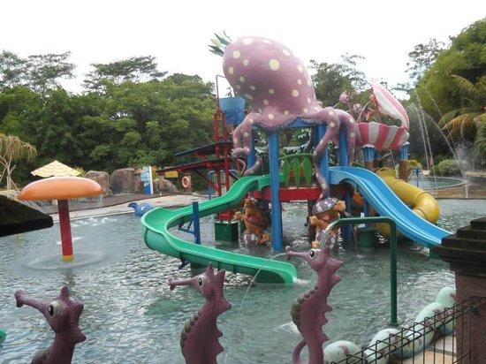 Bali Safari & Marine Park : Water theme park
