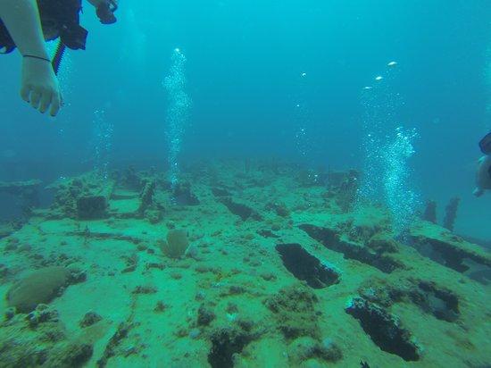 Blue Island DIvers : LST dive