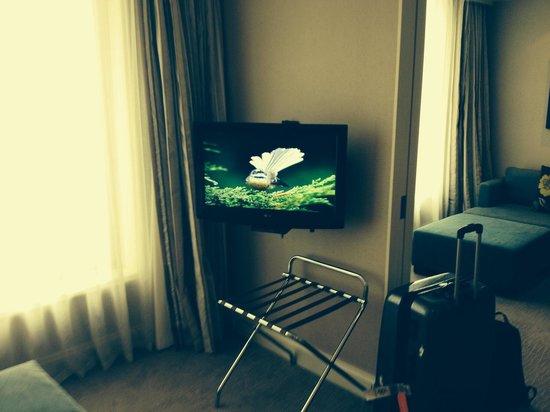 Pullman Auckland : Room