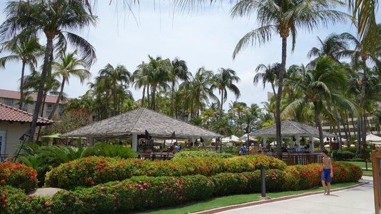 Hyatt Regency Aruba Resort and Casino: At the beach