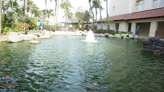 Hyatt Regency Aruba Resort and Casino: From the terrace of the restaurant
