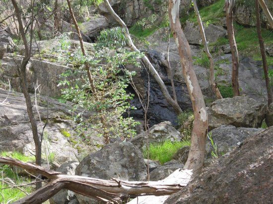 Warby Ovens National Park: water fall