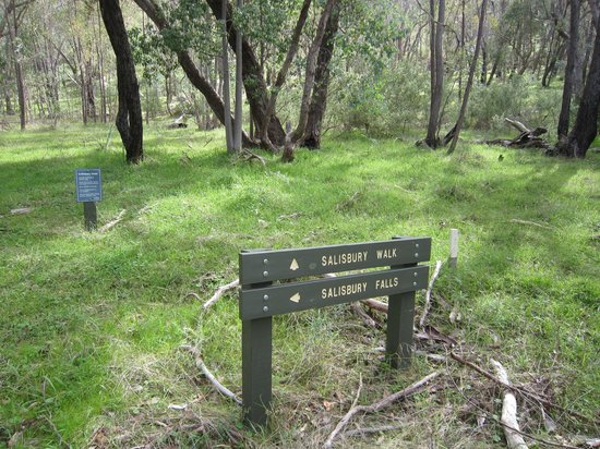 Warby Ovens National Park: choice of walks