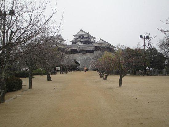 Matsuyama Castle : 松山城