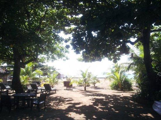 Benoa Beach Front Villas & Spa: View from the resort restaurant