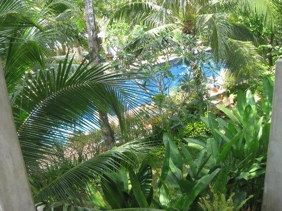Duang Jai Resort: view from rooms