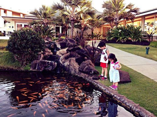The Point at Poipu: Koi ponds