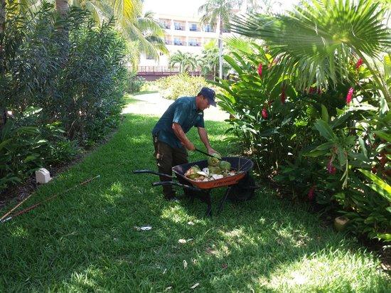 Hacienda Tres Ríos: Opening Coconuts