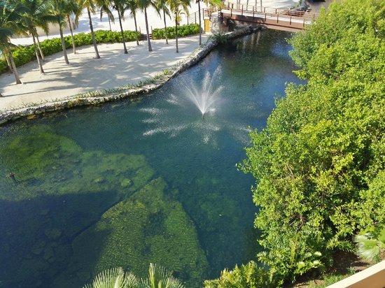 Hacienda Tres Ríos: Fountain