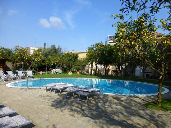 Antiche Mura Hotel: Pool with citrus grove