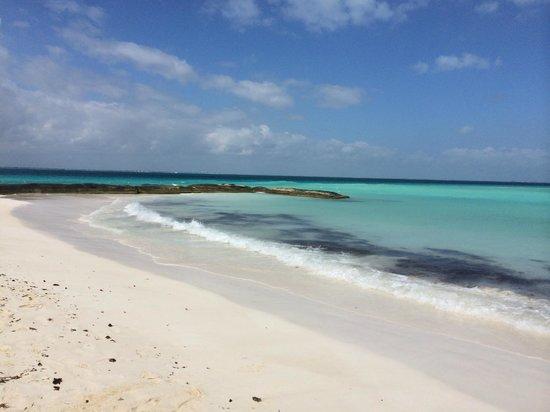 Playa Norte: Loved it!