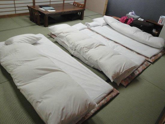 Hotel Seira Shimanto : 和式房