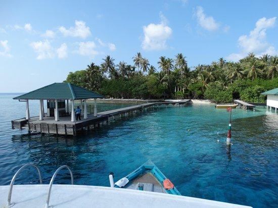 Embudu Village: Ponton de débarquement avec entrée snorkling