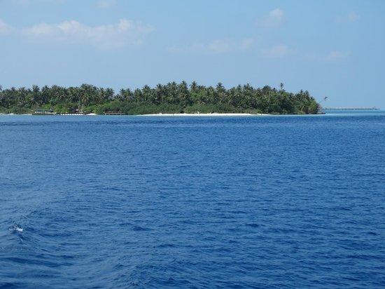 Embudu Village: Vue de Embudu depuis le bateau