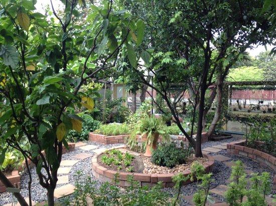 Amita Thai Cooking Class: Tam's organic garden