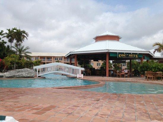 Island Seas Resort : Pool area