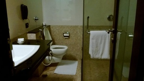 Royalton Hotel: Bathroom