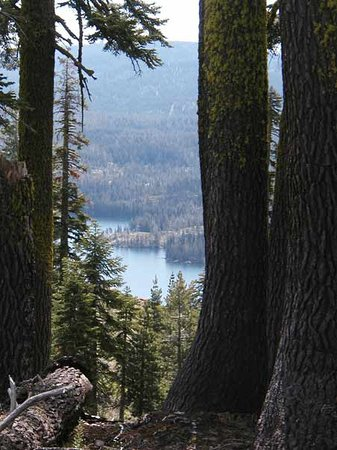 Gold Lake Lodge: Gold Lake from the Pacific Crest Trail