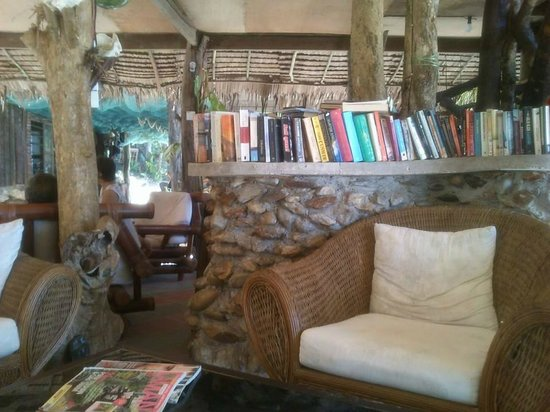 Qimi Chalet : Lounge/Library area