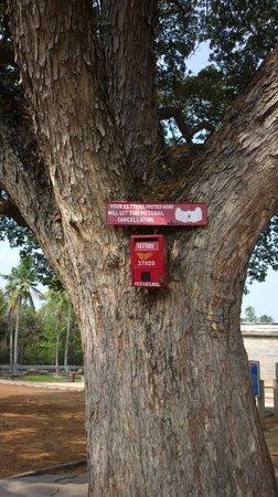 Somnathpur Temple: Post Box!