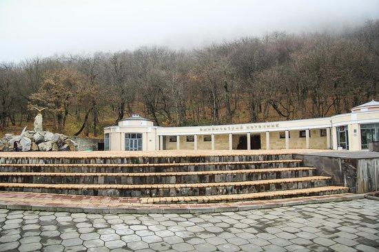 Smirnovsky Geyser