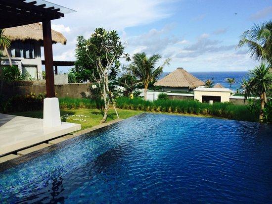 Samabe Bali Suites & Villas: The pool inside our villa