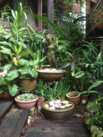Tree Monkey: Water garden at entrance