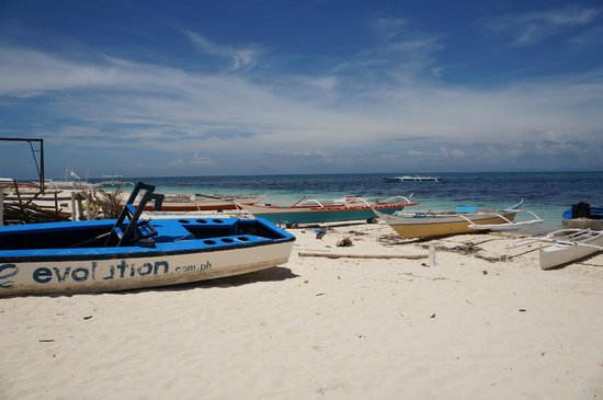 Evolution Diving: malapascua beach