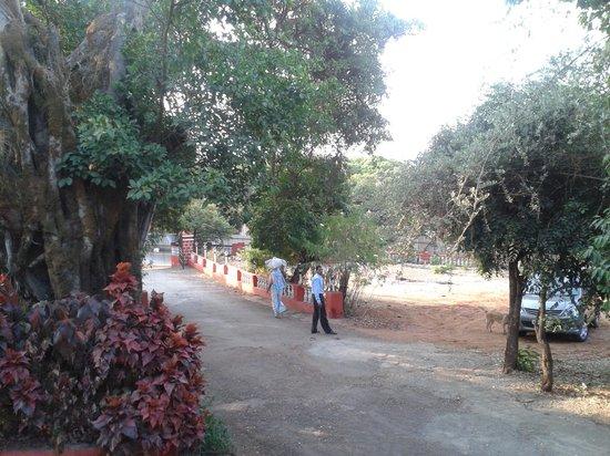 Hotel Shree Paradise: Entry Road