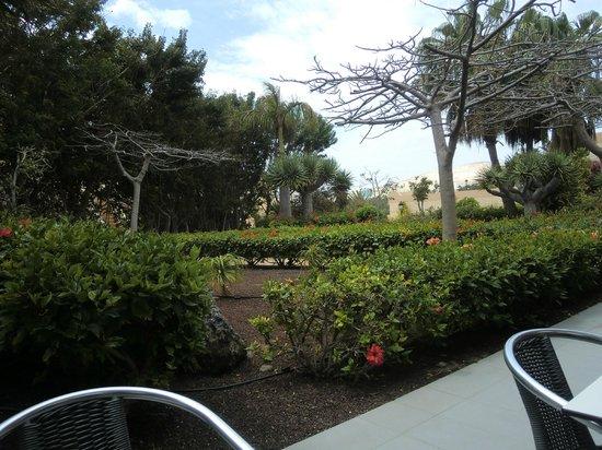 SBH Taro Beach : l'espace restaurant extérieur