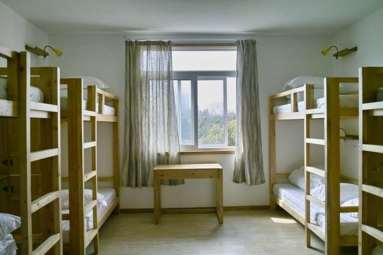 Rock & Wood International Youth Hostel