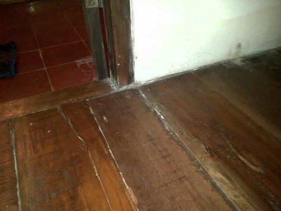 Imah Seniman: sarang rayap di lantai kamar