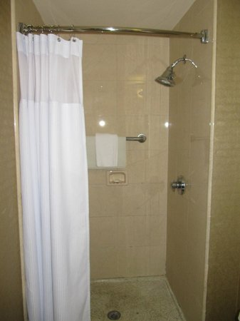 Crowne Plaza Hotel Astor-New Orleans: Bathoom