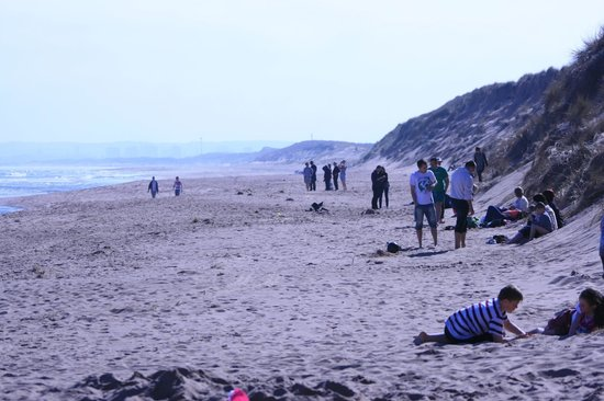 Balmedie Beach: Relaxing under the sun