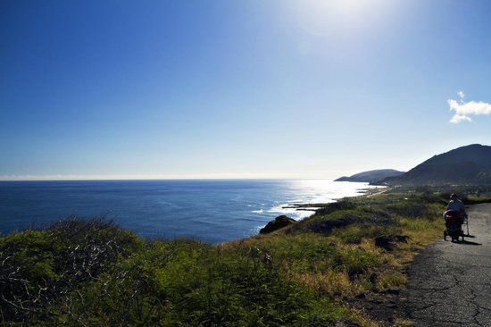 Makapuu Lighthouse Trail: Trail