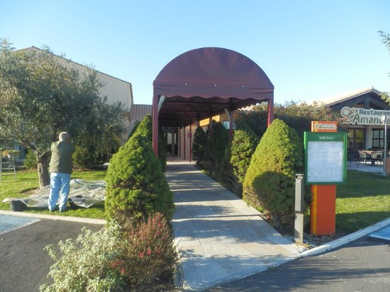 Le Pavillon Hotel: Hotel entrance - are picked olives