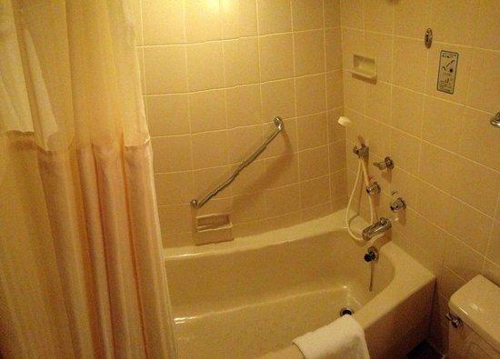 Hilton Nagoya : Integrated shower