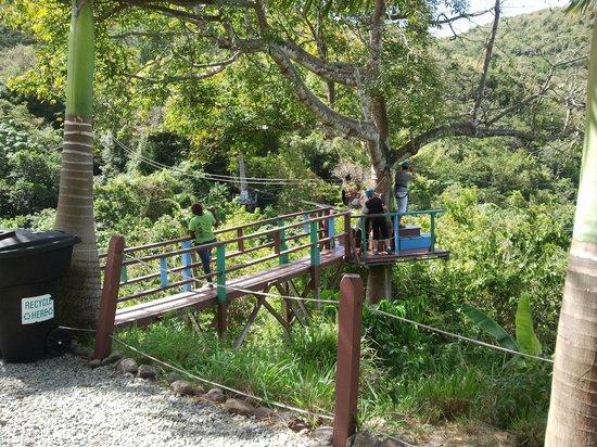Antigua Rainforest Canopy Tour: Umsteigestation